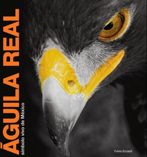 Imagen Águila real, símbolo vivo de México
